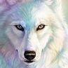Thewolfpro64