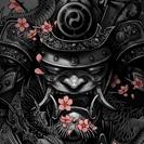 Ninjaibis