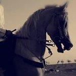Fahad_732