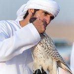 Zayed11