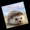 ryuucchi