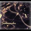 Sidewinder87